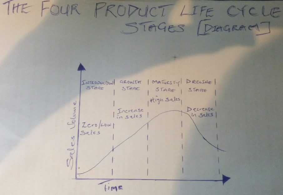 Photo of Product Life Cycle Stages (4 PLC Stages With Examples)
