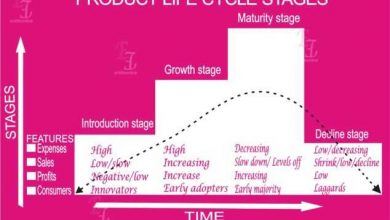 Photo of The 4 Product life cycle stages In Marketing
